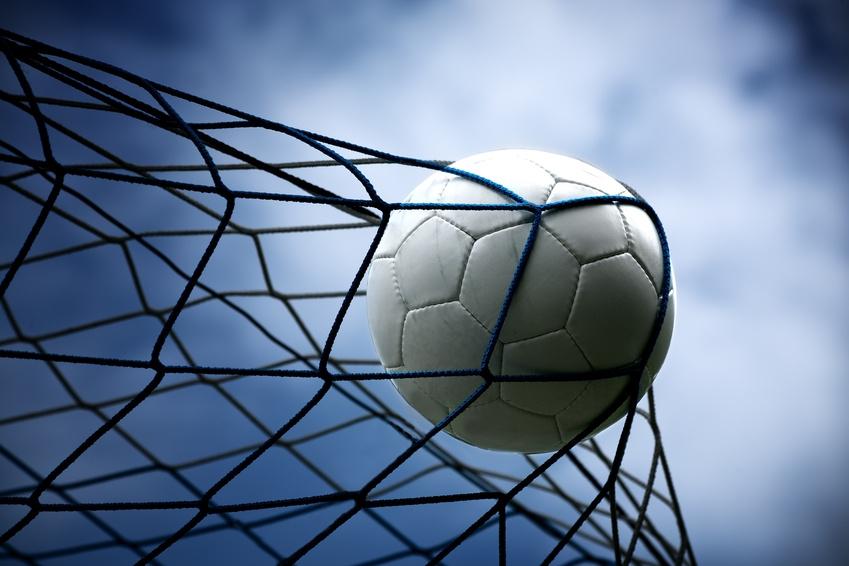 Soccer Backstop Netting